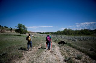 In this June 13, 2015 photo, Leslie Barrett, left, and Micah Pipeboy walk along a barely worn two-track path back to the cars, with Barrett's dog Meeko in tow. Pipeboy is Lissa Yellowbird-Chase's 15-year-old son and often accompanies her on the road from Fargo to the oil fields across the state in her attempt to recover bodies. © Kristina Barker for Al Jazeera America